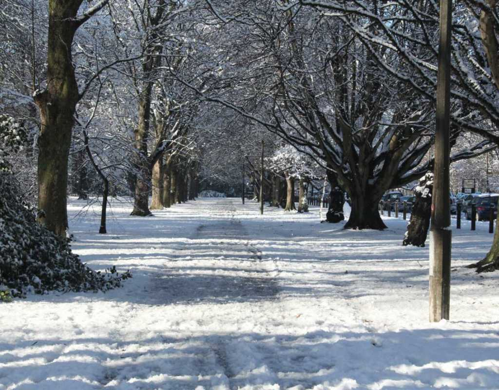 Winter in Christchurch - North South Holiday Park